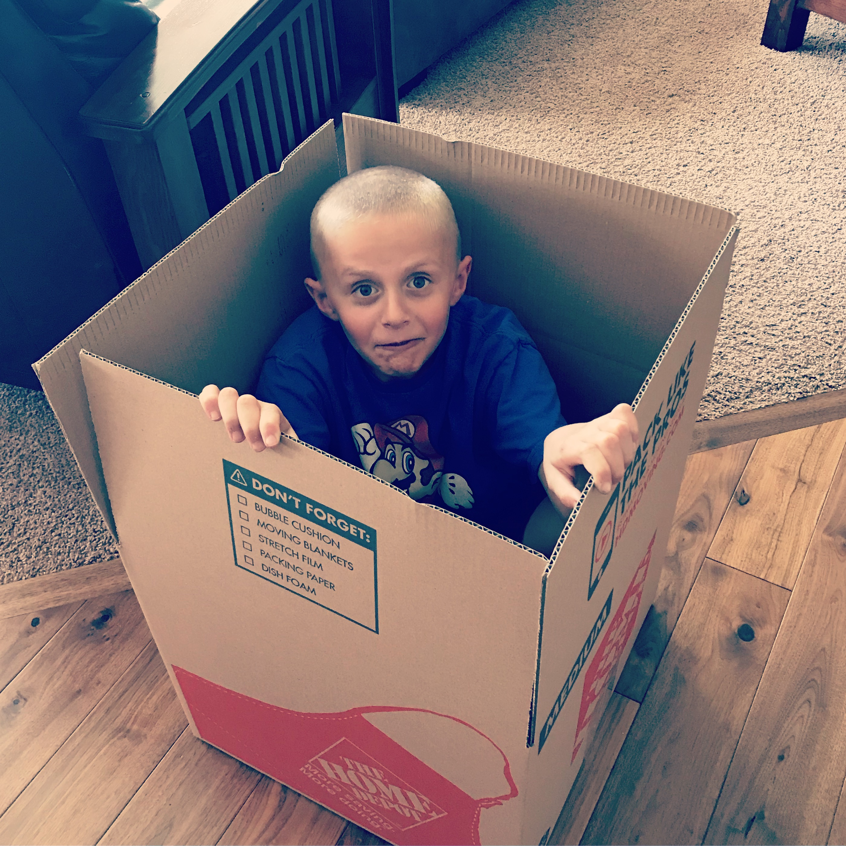 Joey in a box